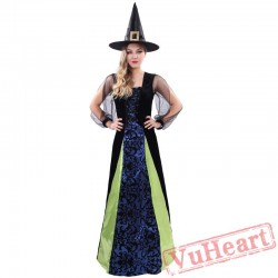 Halloween adult costume, adult witch costume