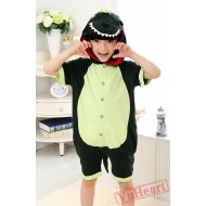Green Dinosaur Kigurumi Onesies Pajamas Costumes for Boys & Girls